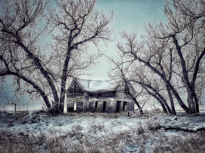 Peace on the Prairies
