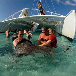 1. Head to Stingray City