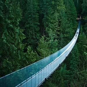 8. Capalino Suspension Bridge