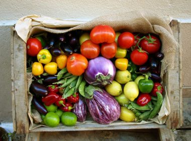 Choose Bright Fruits and Vegetables