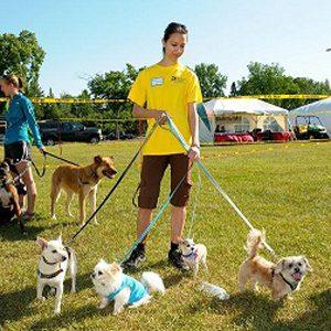 4. Fun Run: Pets in the Park, Edmonton