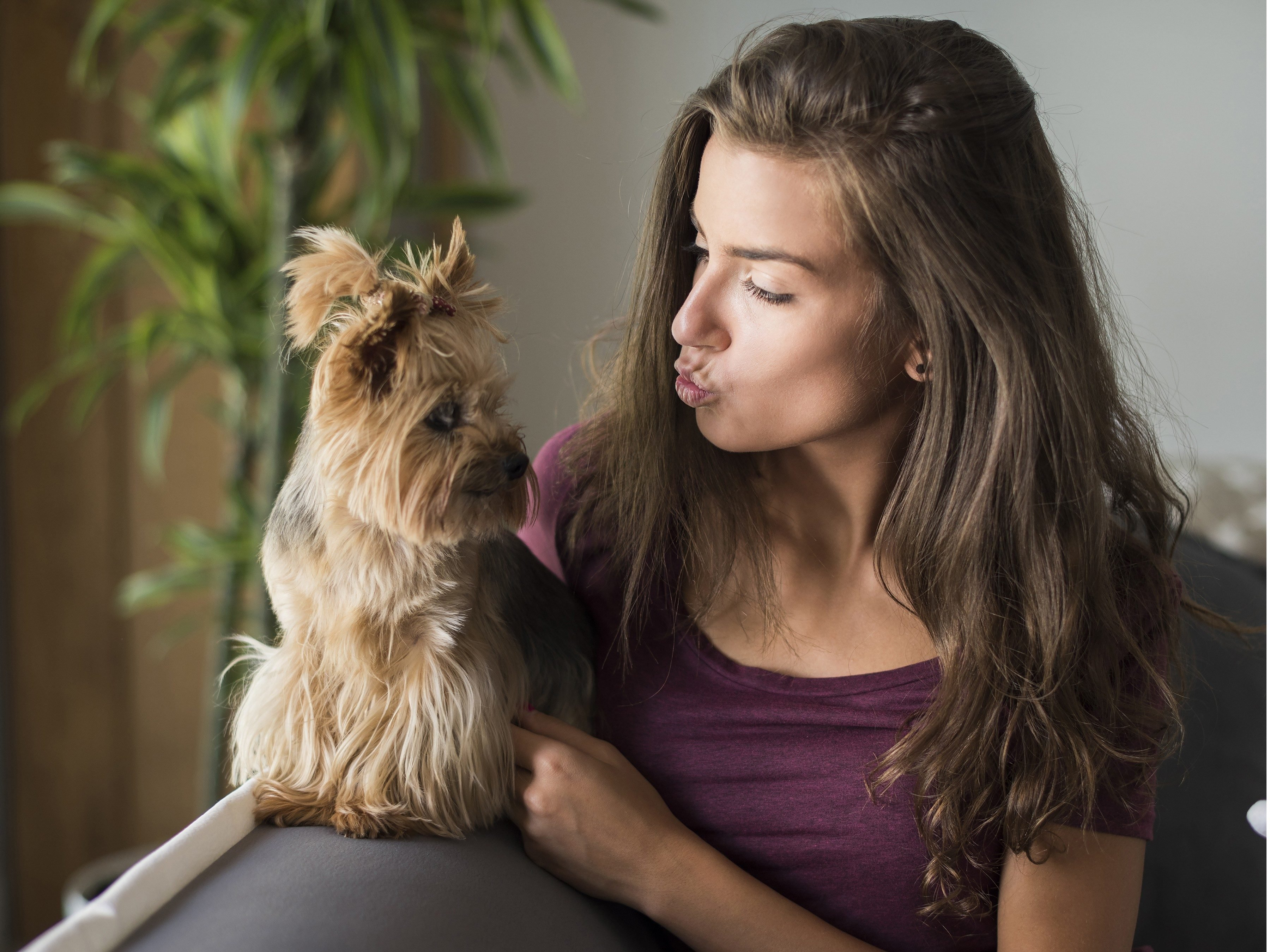 Your choice of dog says a lot about your personality