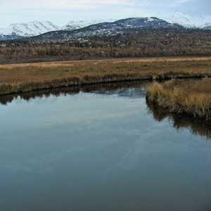 6. Anchorage Coastal Wildlife Refuge