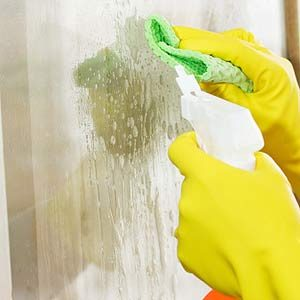 2. Window Cleaner Treats Bee Stings