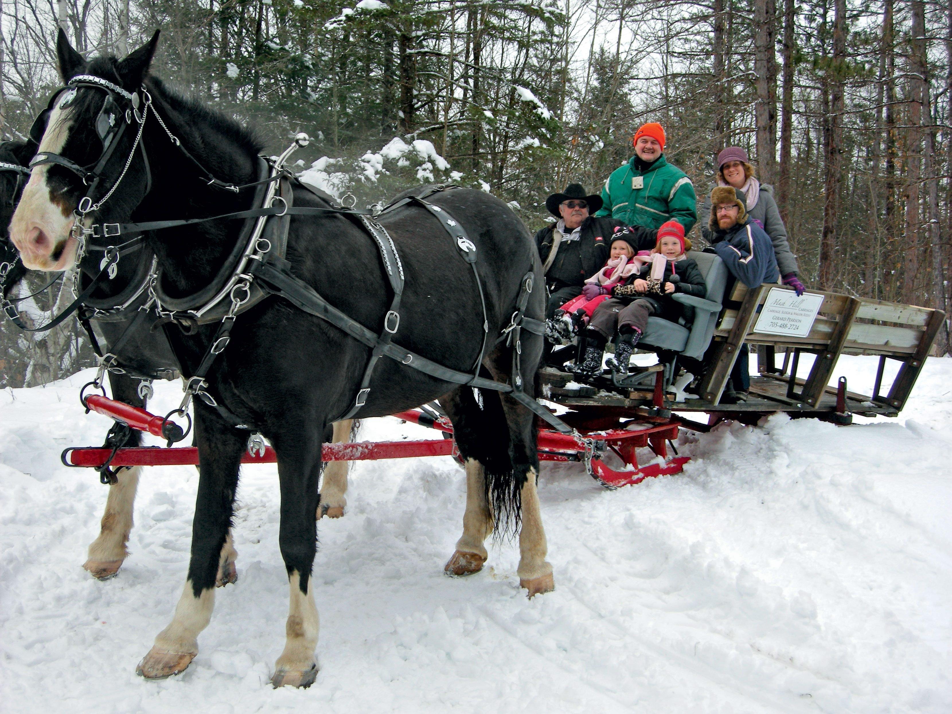 Winter in Canada: Dashing Through the Snow