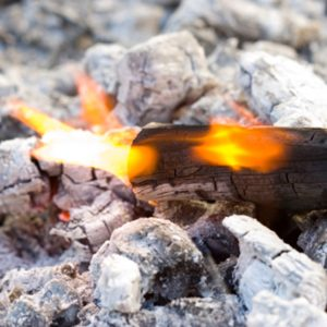 Wood-Ash Potassium Boost