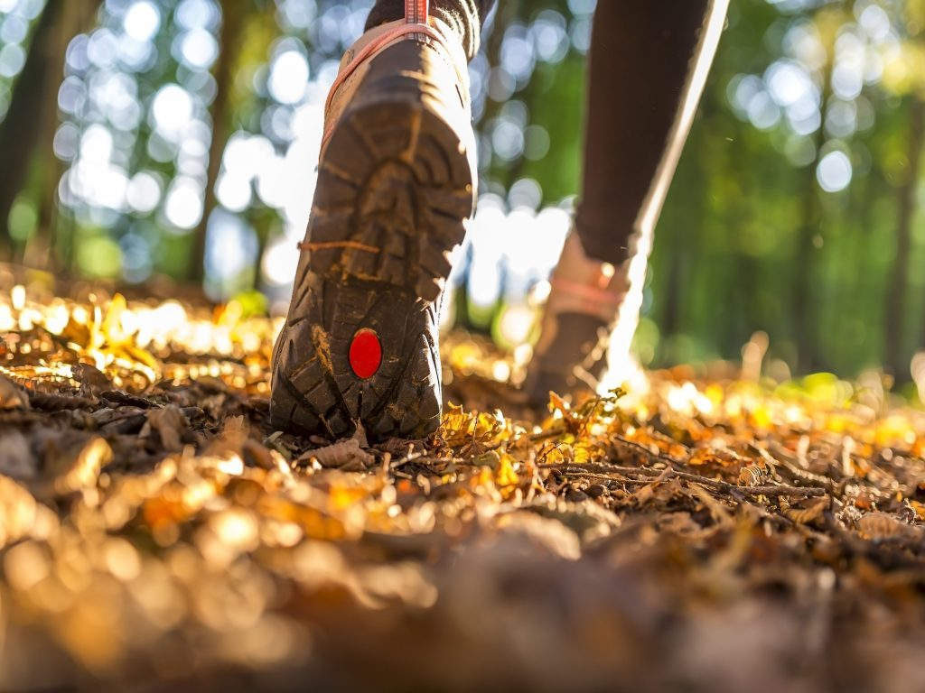 Person running through the woods with socks