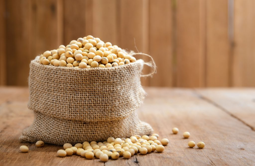 Soy beans in sack