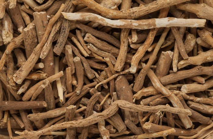 Close-up of Withania roots