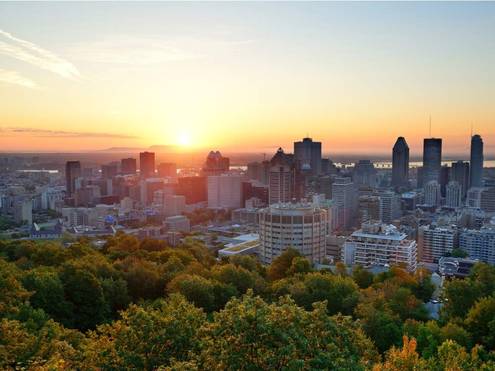 View from atop Mont Royal