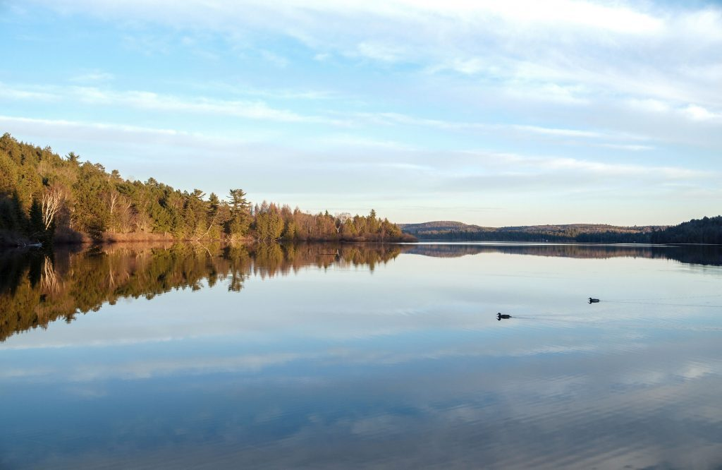 Day trips from Toronto to Algonquin National Park
