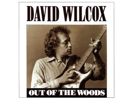 David Wilcox, Out of the Woods