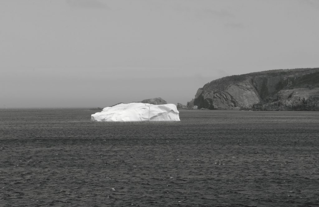 Iceberg at Cape Bonavista