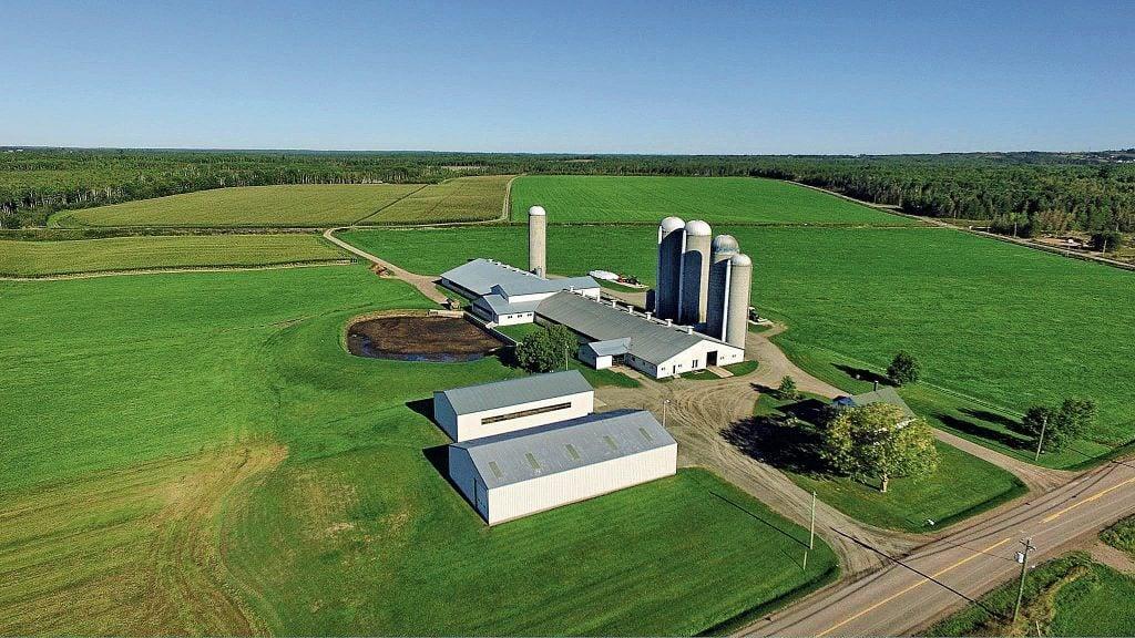 A dairy farm in Boundary Creek