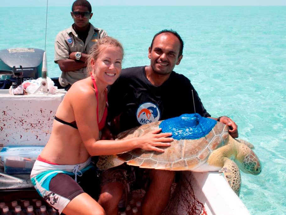 Sea turtle tracking on Turks & Caicos