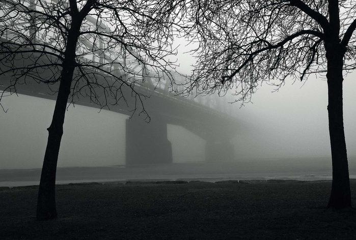 Bridge in Ottawa