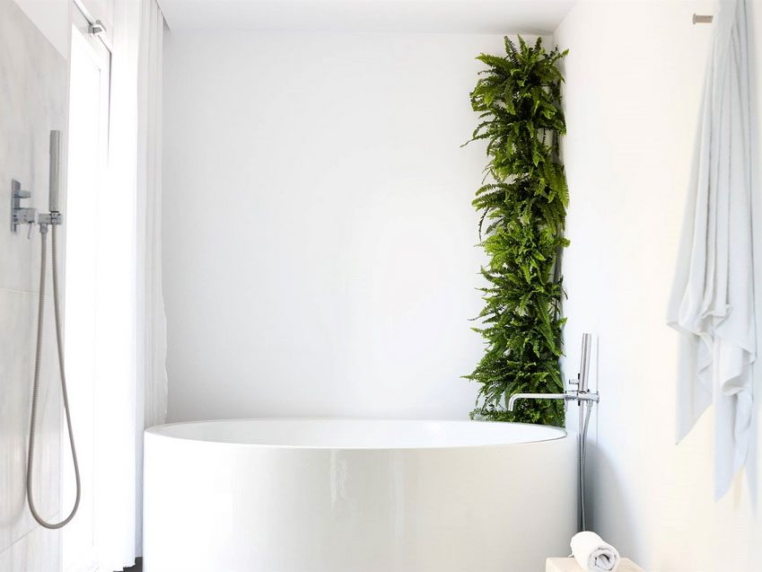 Vertical planters in bathroom