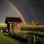 After the Rain: Your Best Rainbow Photography