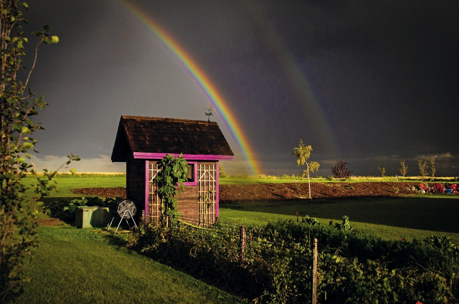 rainbow-photography-pretty-in-pink
