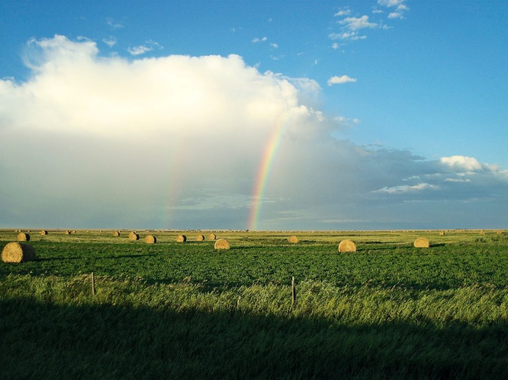 Rainbow over hay farm in Alberta