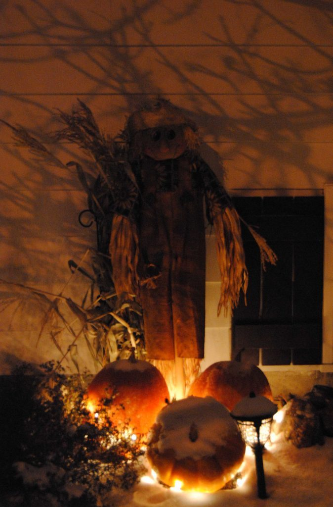 Pumpkins and scarecrow on Halloween