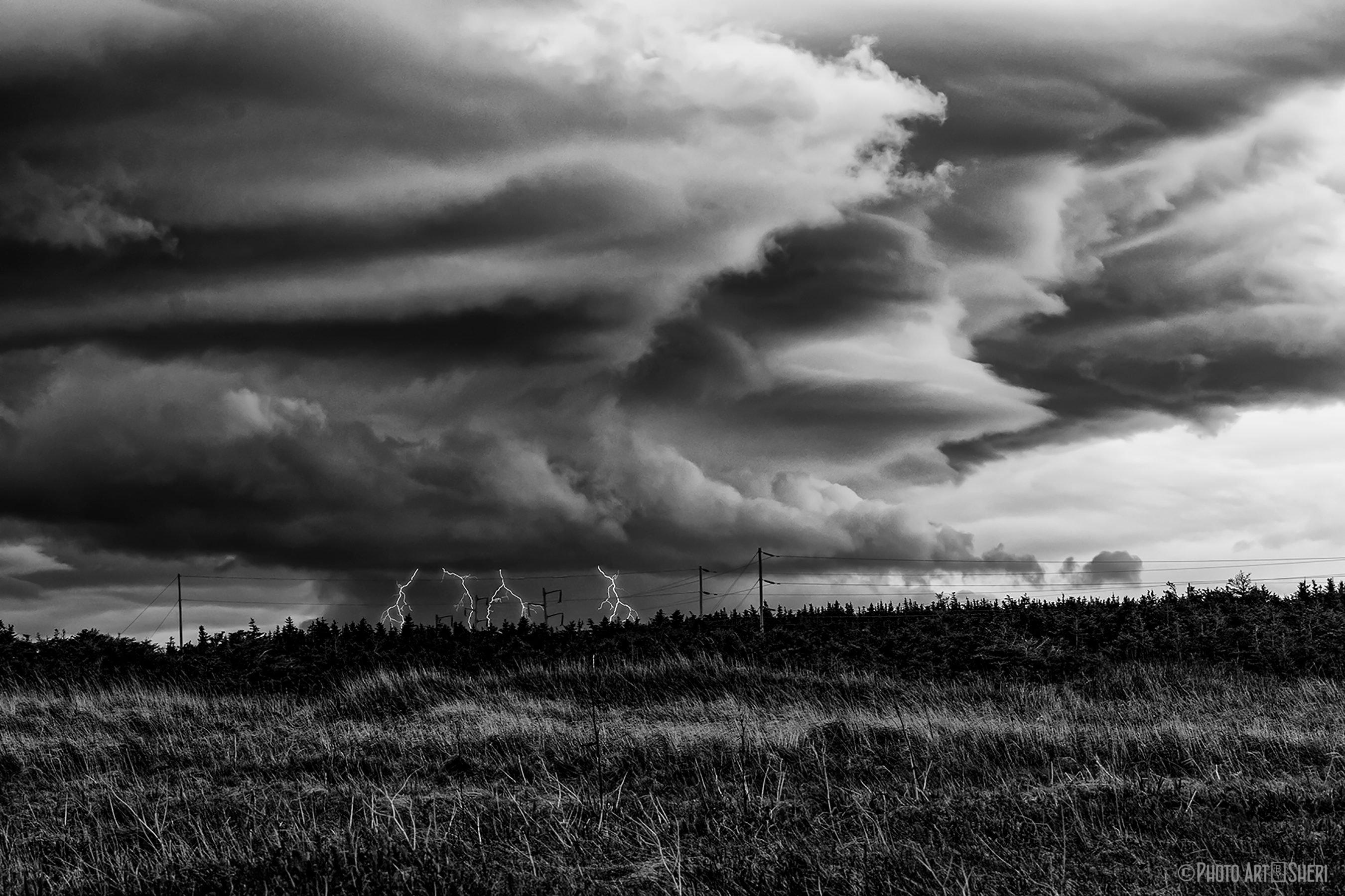 sheri-sanders-storm