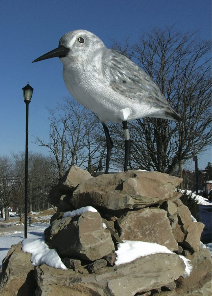 Giant bird statue in N.B.