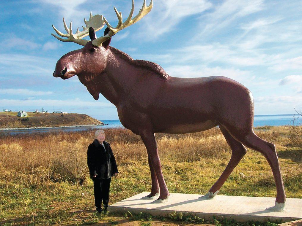 Giant moose in Nova Scotia