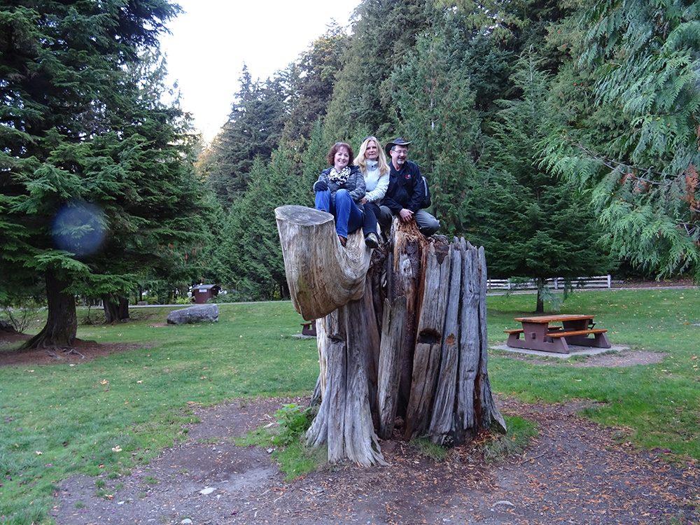 Three adults sitting on tree