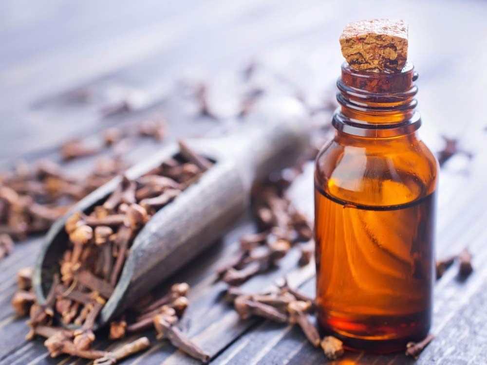 Toothache remedy: Clove oil