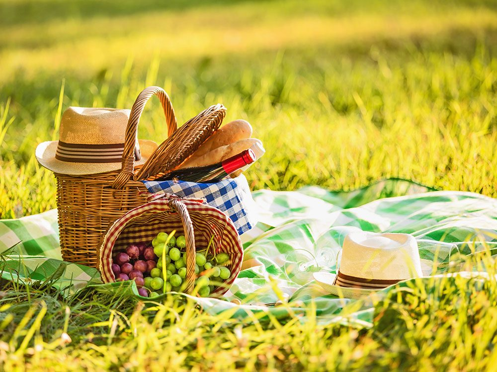 Picnic lunch in field