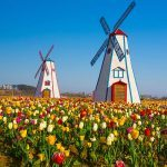 6 of America's Most Beautiful Places to Visit in the Spring