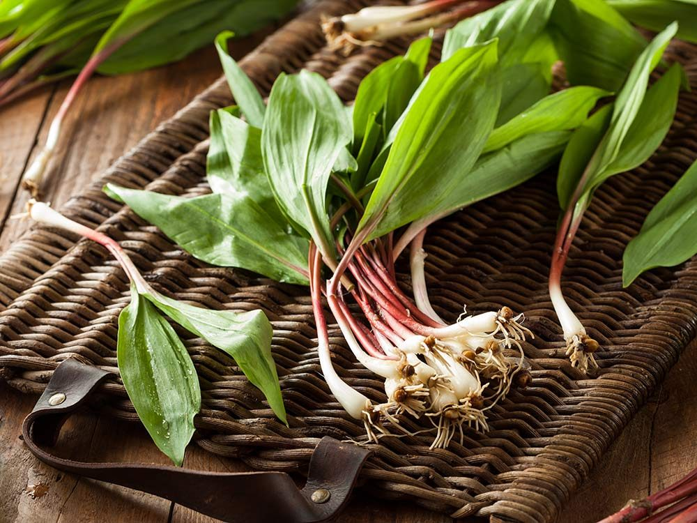 Ramps are one of the examples of spring superfoods
