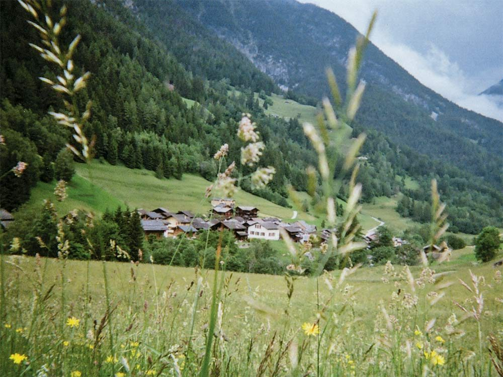 Green field in Mont Blanc