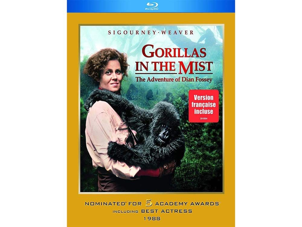 Gorillas in the Mist blu ray cover