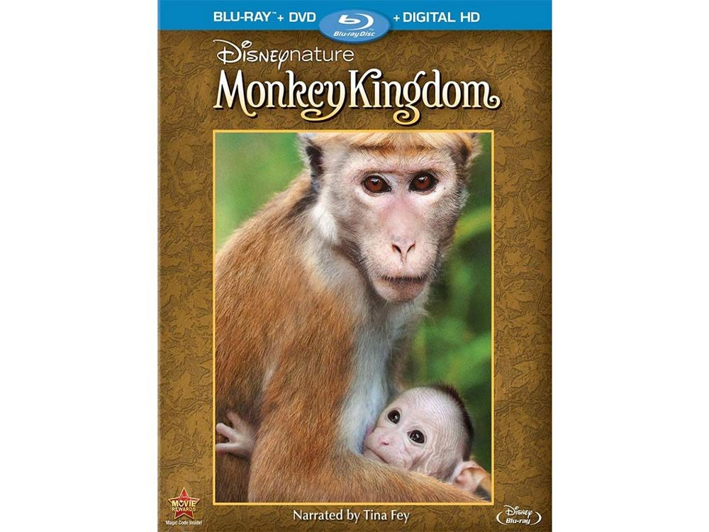 Monkey Kingdom blu ray cover