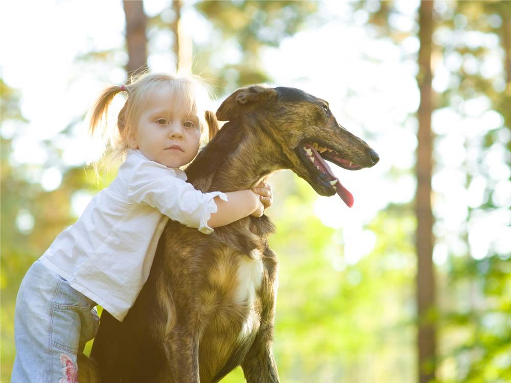 Little girl with pet dog