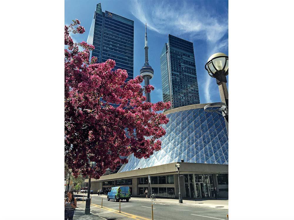 CN Tower in Toronto, Ontario
