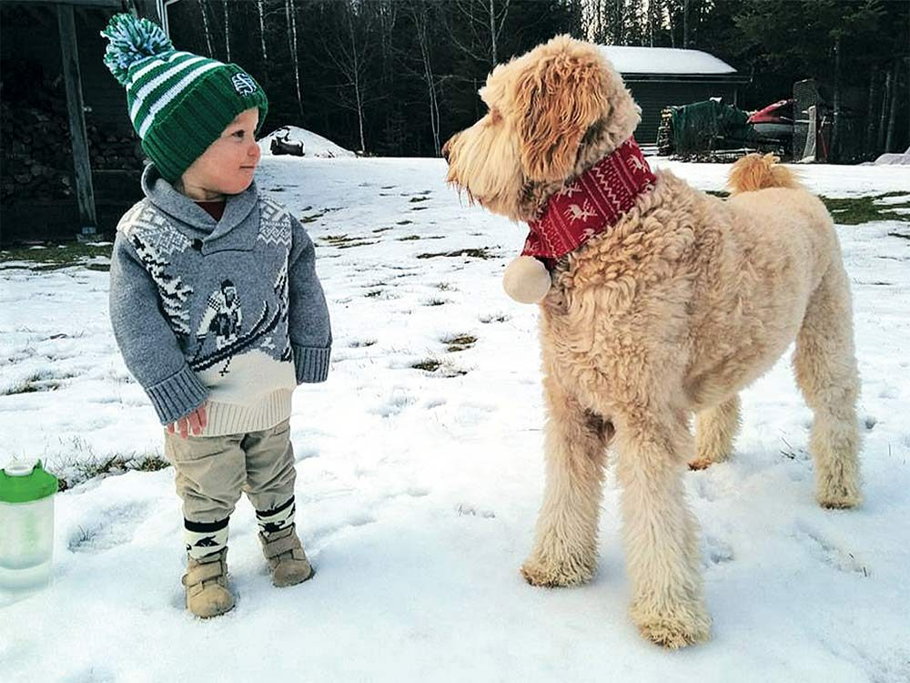 Boy and dog playing in the snow