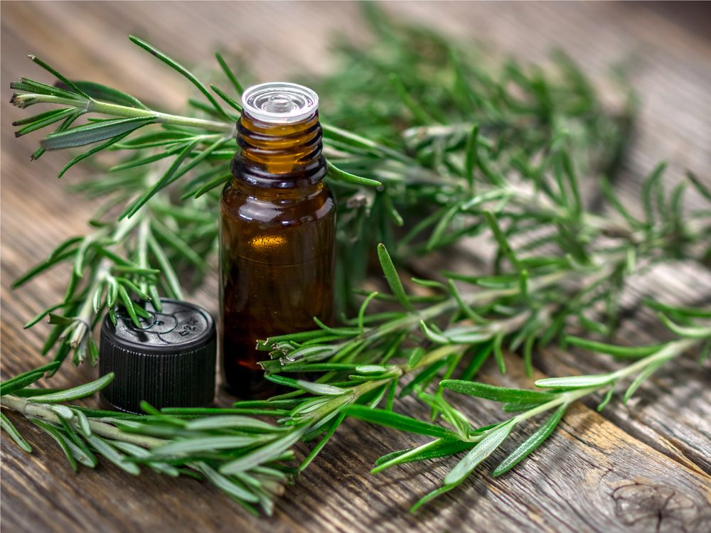 Use thyme and rosemary oil for head rubs as a homemade headache remedy