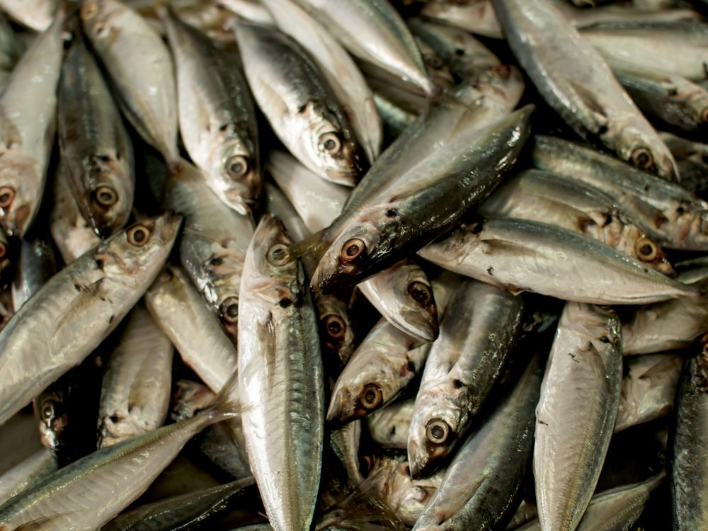 Eat SMASH fish to avoid clogged arteries