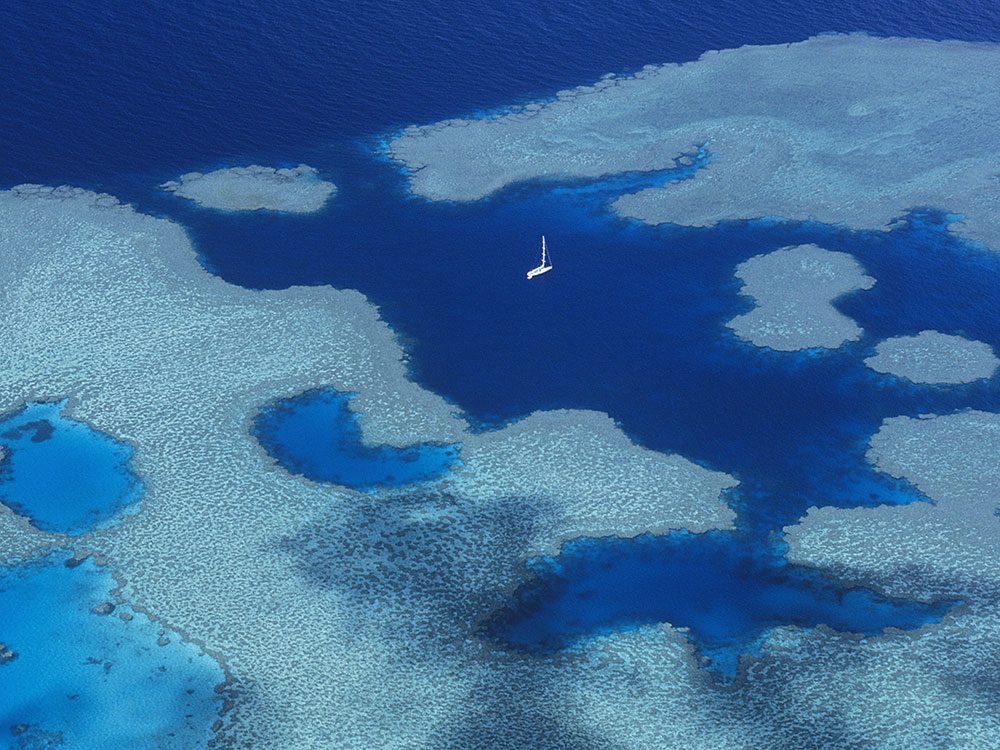 Great Barrier reef by sailboat