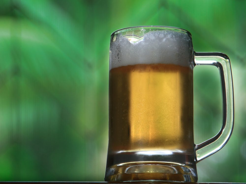 Drinking beer can attract mosquitoes