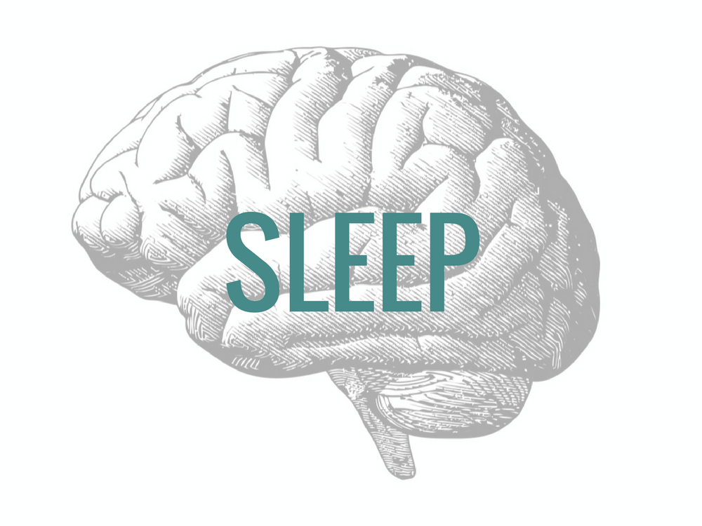 Sleep calms down the brain to reverse stress