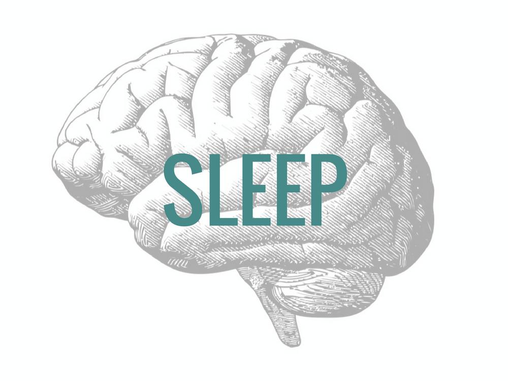 Sleep calms down the brain to reverse stress