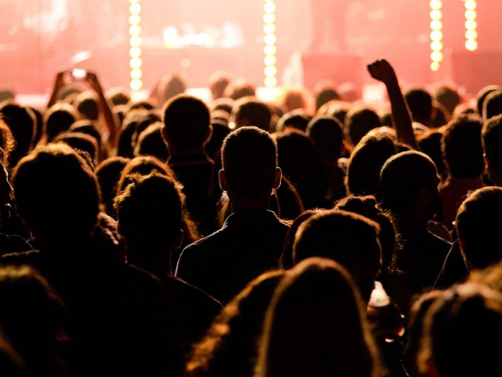 Audience at rock concert