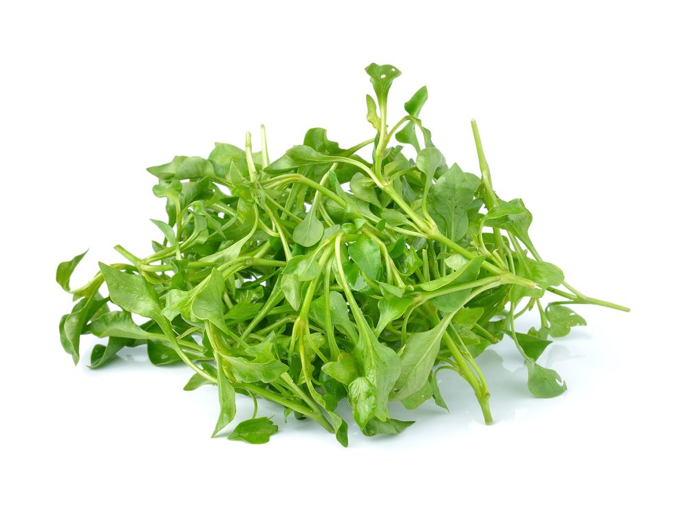 Watercress is a calcium-rich food that will help your burn fat