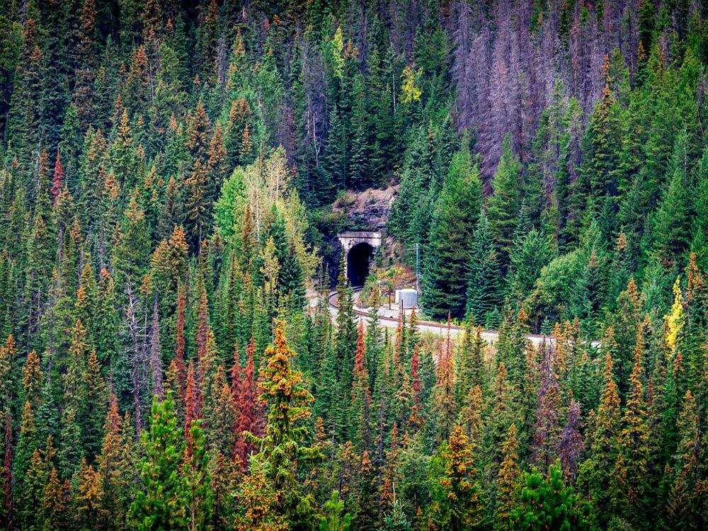 Spiral Tunnels, British Columbia