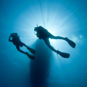 Below the Ocean's Surface: A Deep Dive to Remember