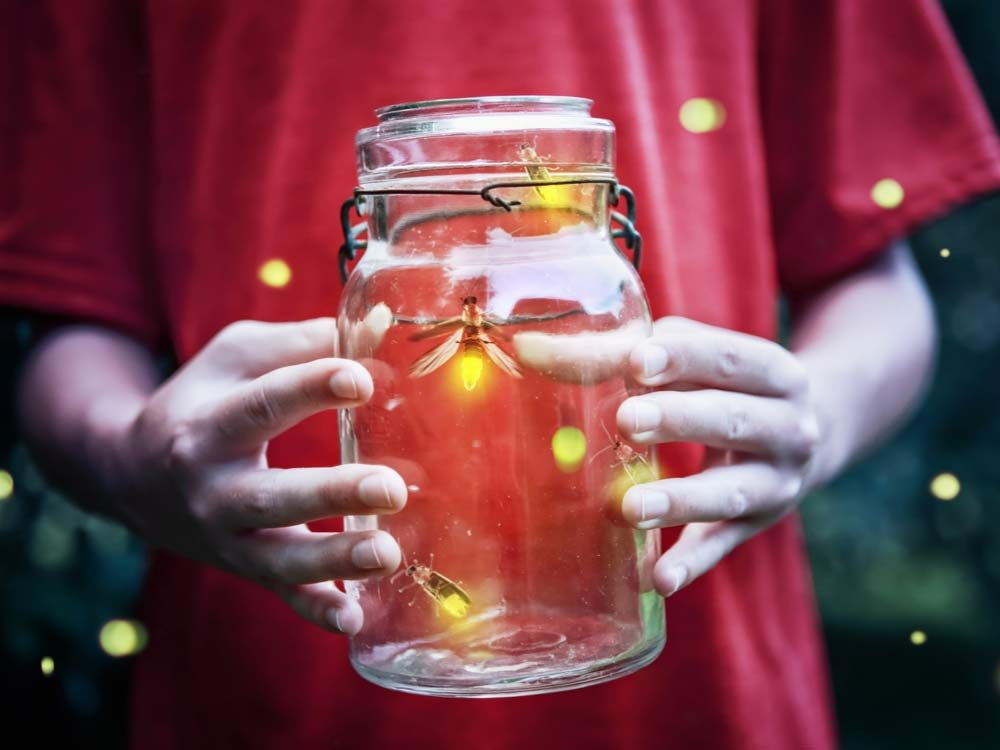 Fireflies in a jar